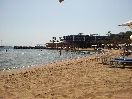 Helnan Marina Sharm: Spiaggia