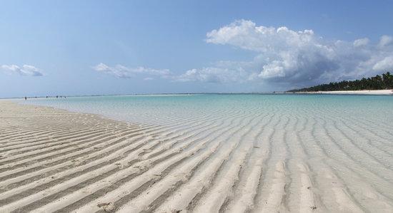 Neptune Pwani Beach Resort & Spa: Strand bei Ebbe