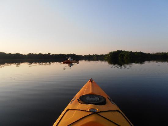 Everglades Rentals & Eco Adventures: Coming home...