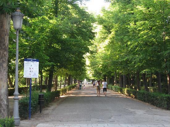 Royal Palace of Aranjuez: jardines del principe
