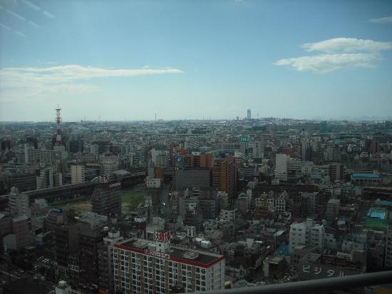 Tsutenkaku: 展望台から見た大阪