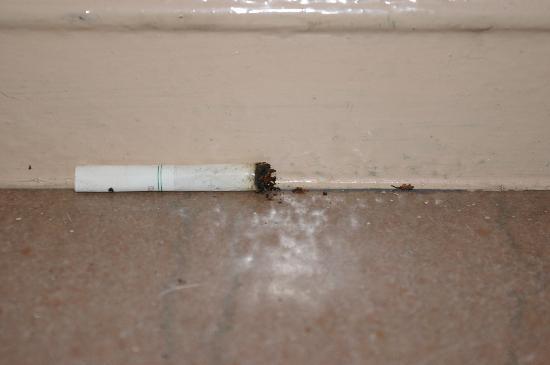โรงแรมเดย์บรอดเวย์: Megot dans  les escaliers pdt 4 jours