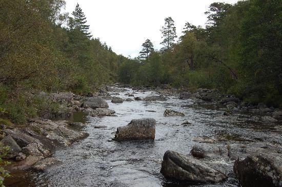 Lochletter Lodges: River Affric