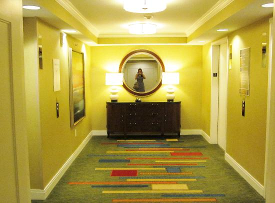 Atlanta Airport Marriott Gateway: Lifthal