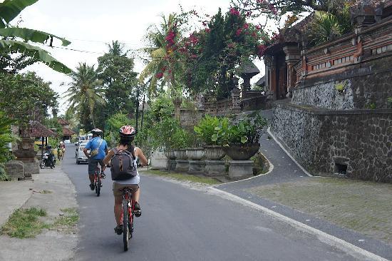Downhill biking with Bali on Bike