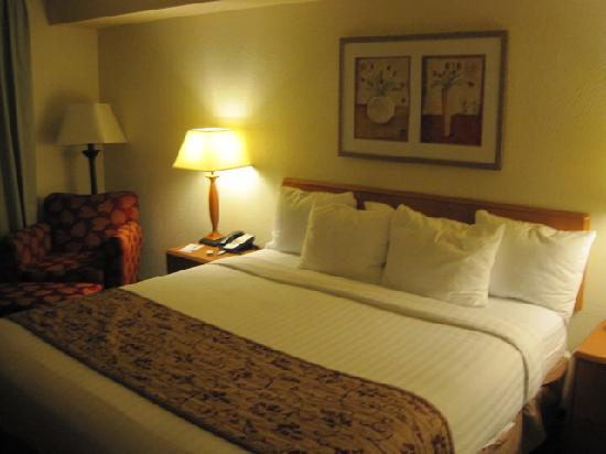Merrillville, IN: Well Appointed Room