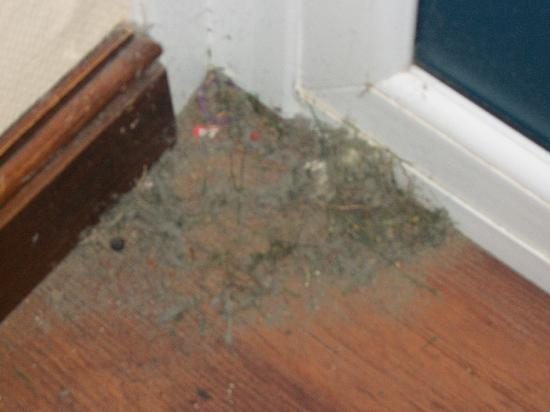 Pontins Brean Sands Holiday Park: Dirt from the lounge floor (only!)