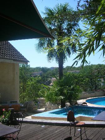 Villa Hugon : vue du palmier et de la piscine