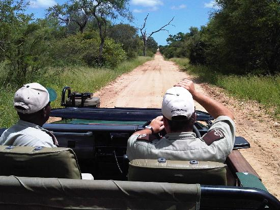 Kapama River Lodge: transfer from Hoedspruit Airport to the lodge