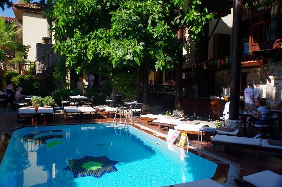 Alp Pasa Hotel: Pool
