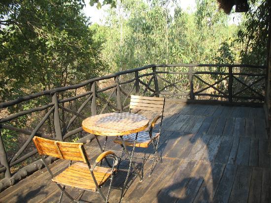 Pugdundee Safaris Tree House Hideaway: Tree house balcony