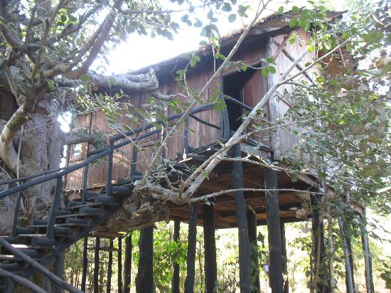 Pugdundee Safaris Tree House Hideaway: Our tree house