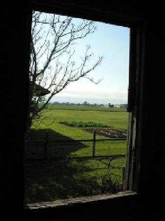 Laura Plantation: Louisiana's Creole Heritage Site: View of the fields from the slave quarters.