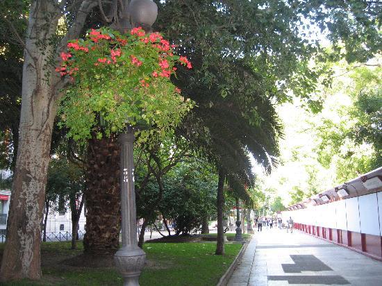 มาดริด, สเปน: recoletos avenue, walk