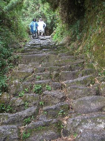 SAS Travel Peru: Inca Trail