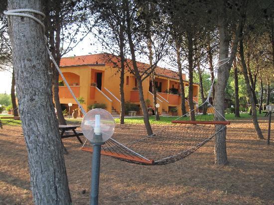 Sole del Mediterraneo: zona relax pineta