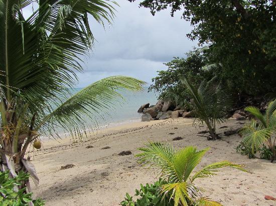 โคโค เด เมอร์ แอนด์ แบล็ค แพร์รอท สวีต: beach at Coco de Mer
