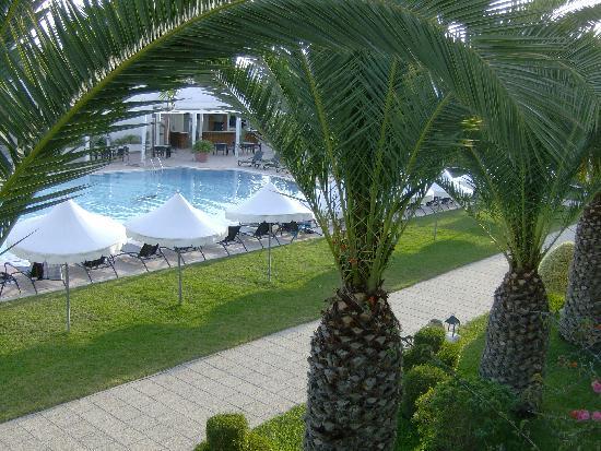 Vincci Flora Park: vue de la chambre sur la piscine