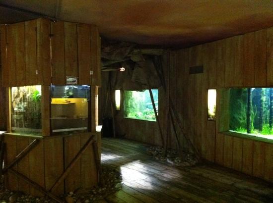 Grand Aquarium de Touraine: saal du exotique