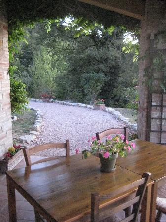 Casale San Bartolomeo: View from patio to driveway