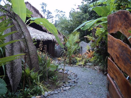 Pure Jungle Spa: View from the gate