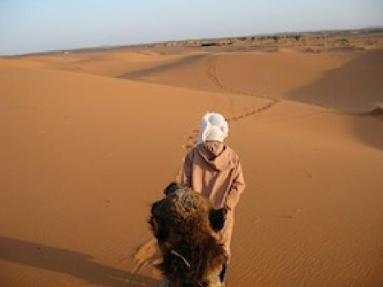 Travel Exploration Morocco Private Tours: Sunset in the Sahara by Camel