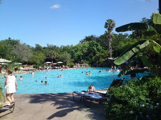 Disney's Animal Kingdom Lodge: Pool
