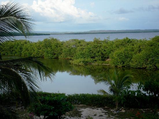 Hotel Playa Manglares Isla Baru: View on Barbacoa's bay