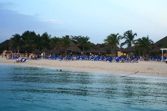 Allegro Cozumel: Playa