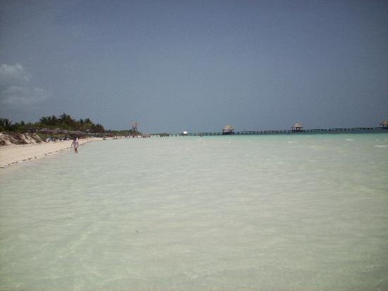 Iberostar Daiquiri: Playa del Hotel