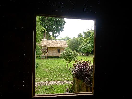 Ban Lao Pako: View from the room