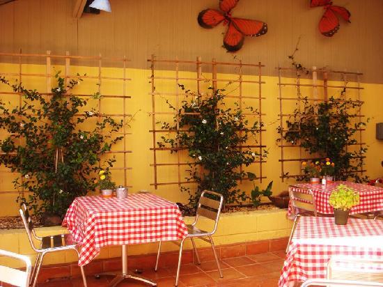 Community Cafe: Patio