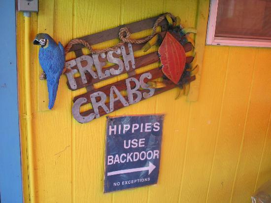 Java Joe's Cafe: Hippies use back door