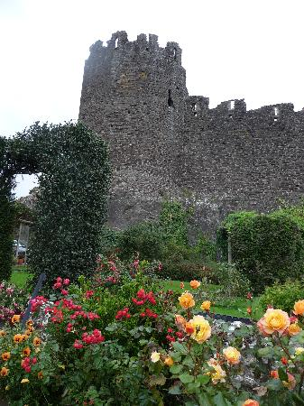 Bryn Guest House: The garden beside the town wall at Bryn