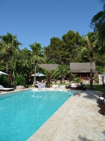 Finca Can Xuxu : The beautiful pool area
