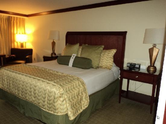 Hyatt Regency Orlando International Airport: room