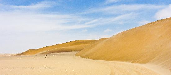 Turnstone Tours: Desert outside Swakopmund