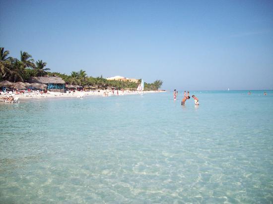 Sol Palmeras: playa hotel