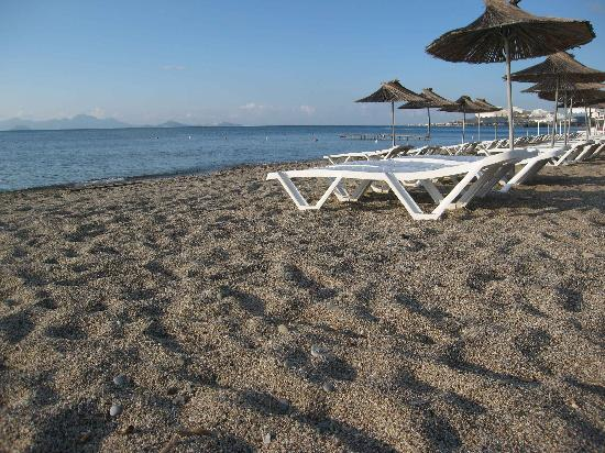 Akti Beach Club Hotel: Beach