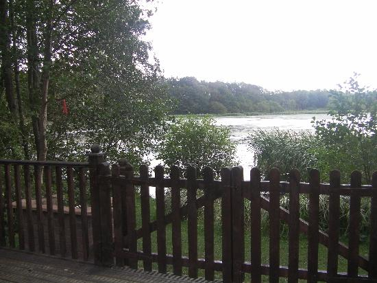 The Tranquil Otter: View for outside the Log Cabin