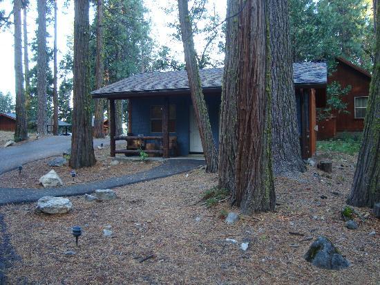 เอเวอร์กรีนลอดจ์ แอท โยเซมิตี:: our cabin
