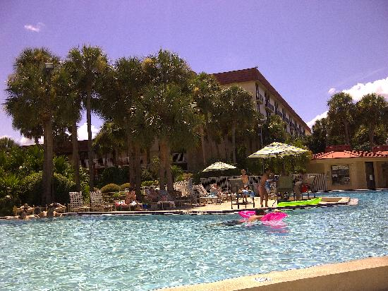 International Palms Resort & Conference Center: The pool area