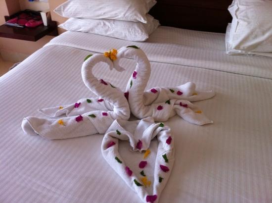 Coral Sea Holiday Village: towel art