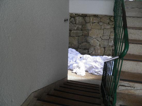 Hotel Nimfa 사진