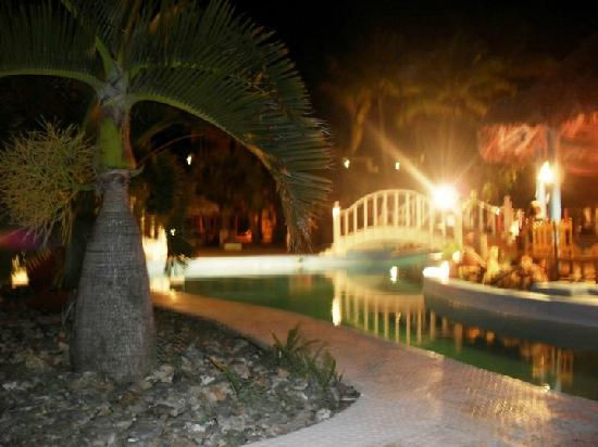 Sol Palmeras: El puentecito para el bar de la pile