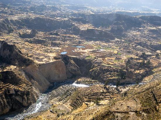 Colca Canyon: inizia il canyon: i terrazzamenti