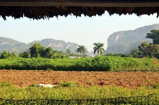 Villa Noel: ausblick vom frühstückstisch