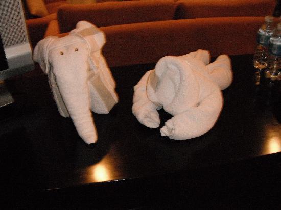 El Dorado Maroma, by Karisma: Fun towel art