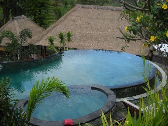 Uma Agung Villas: piscine