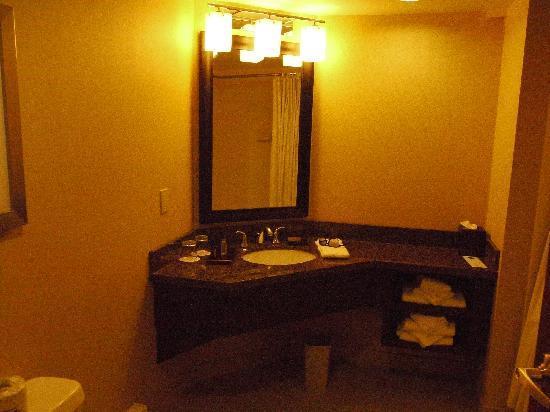แมร์ริออทท์ ไนแองการ่าฟอลส์วิว โฮเต็ล & สปา: unfriendly bathroom